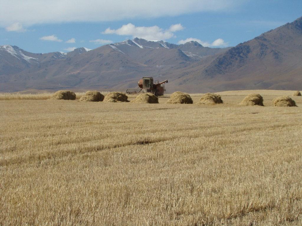 Landwirtschaft Kirgistan Traktor Dschalalabat