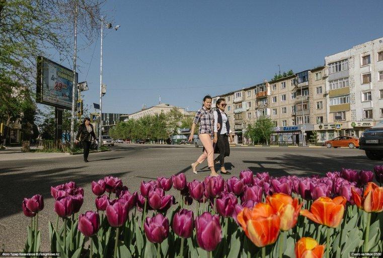 Blumen Schymkent Tulpen