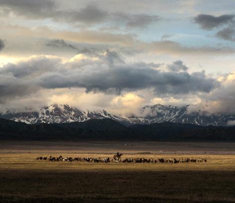 Steppe und Berge in Kirgistan im Abendlicht