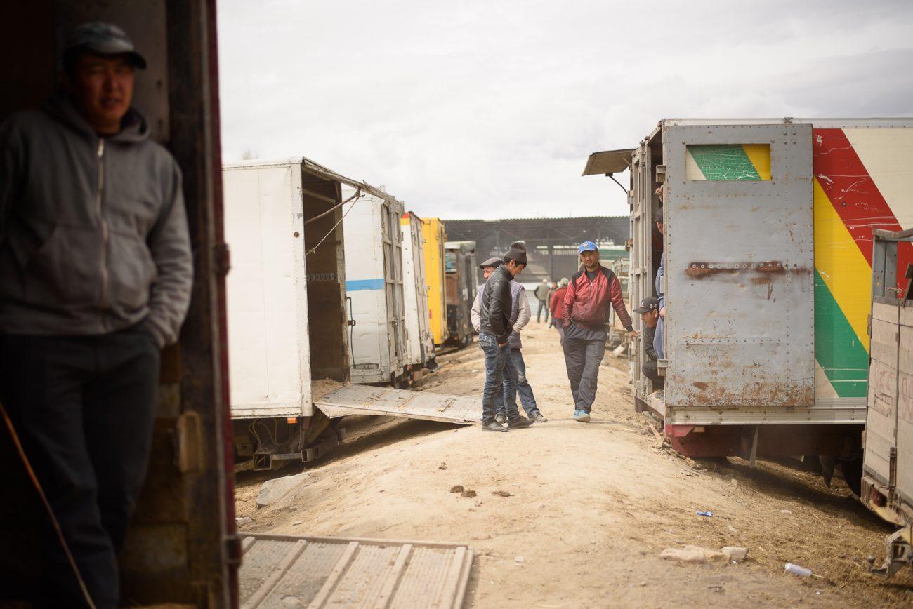 Auf dem Viehmarkt in Kotschkor Kirgistan