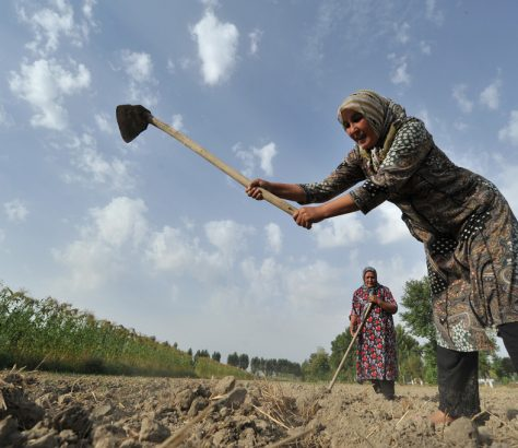 Frau Arbeit Kirgistan Hacke