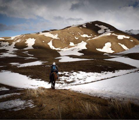 Pferd in den Bergen in Kirgistan