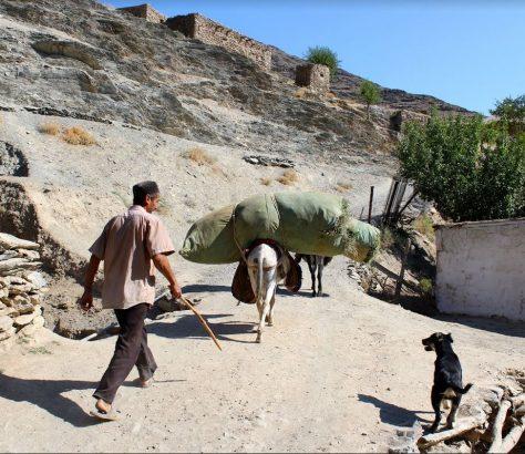 Usbekistan, Dorf, Bild des Tages