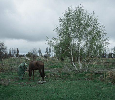 Pferd Bauer Kirgisistan Grigorievka