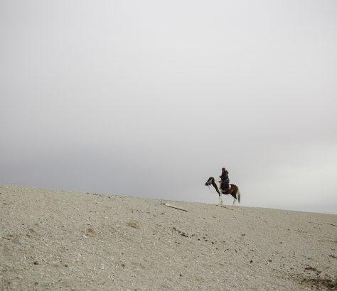 Kirgistan Reiter Pferde