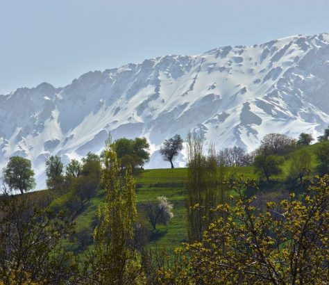 Frühling Usbekistan Gebirge