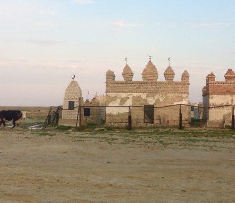 Kuh Kasachstan Friedhof