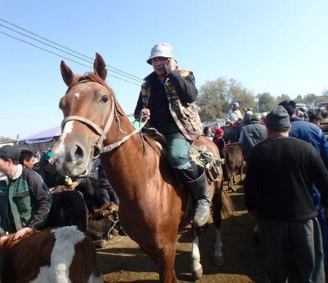Kirgisistan Kotschkor Basar Pferd