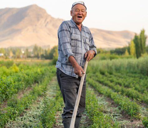 Ein kirgisischer Bauer bei der Feldarbeit