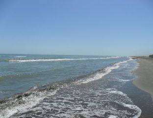Küste des Kaspischen Meeres