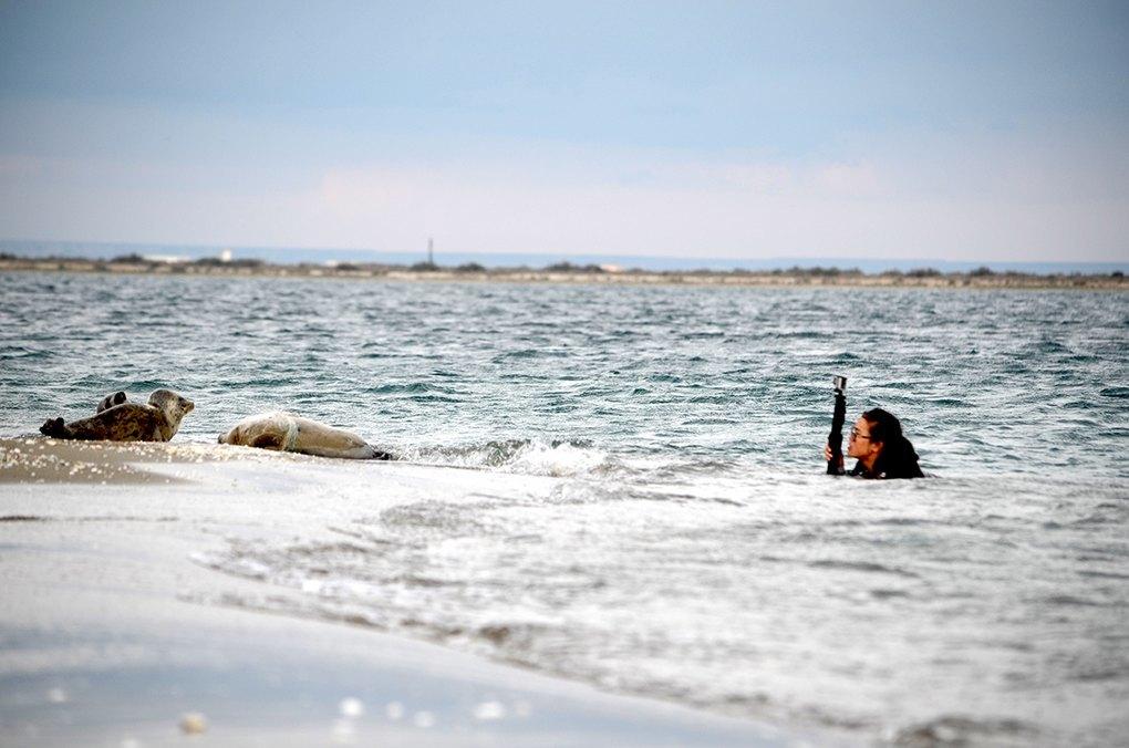 Ásel Baımuqanova liegt im Wasser und filmt Robben