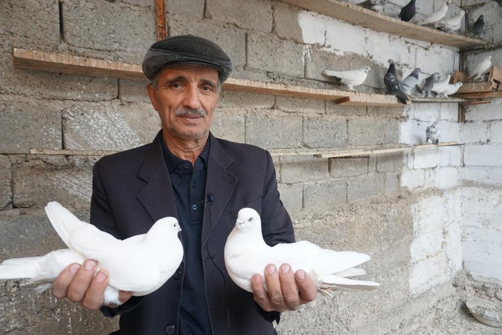 Samad Safarow