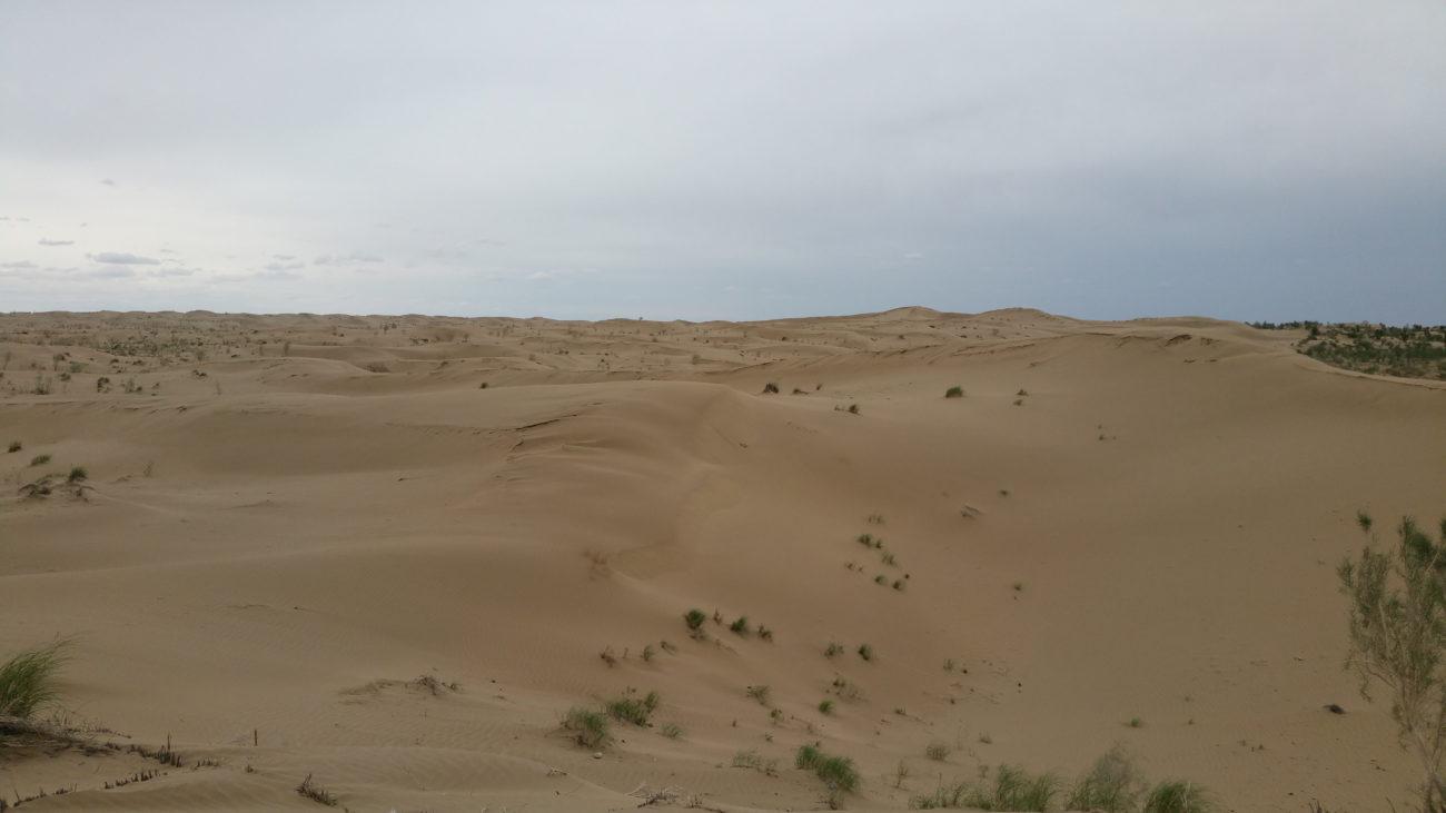 Karakumwüste Turkmenistan