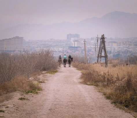 Tadschikistan Khujand Syrdaryo Pferd