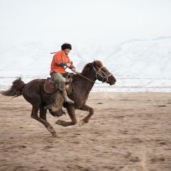 Kök Böru Spiel Pferd