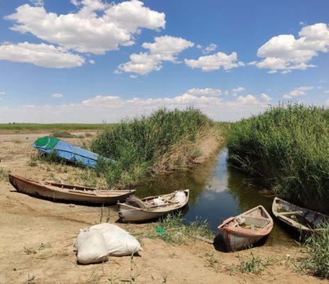Sudoche-See Usbekistan Karakalpakstan Fischer