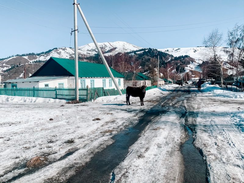 Bild des Tages Kirgistan Jyrgalan-Tal Dorf