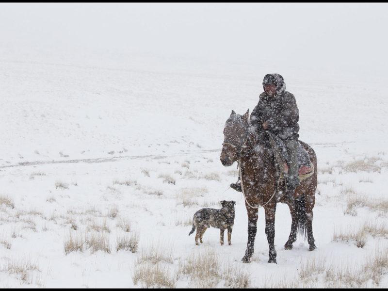 Bild des Tages Kirgistan Schnee Steppe