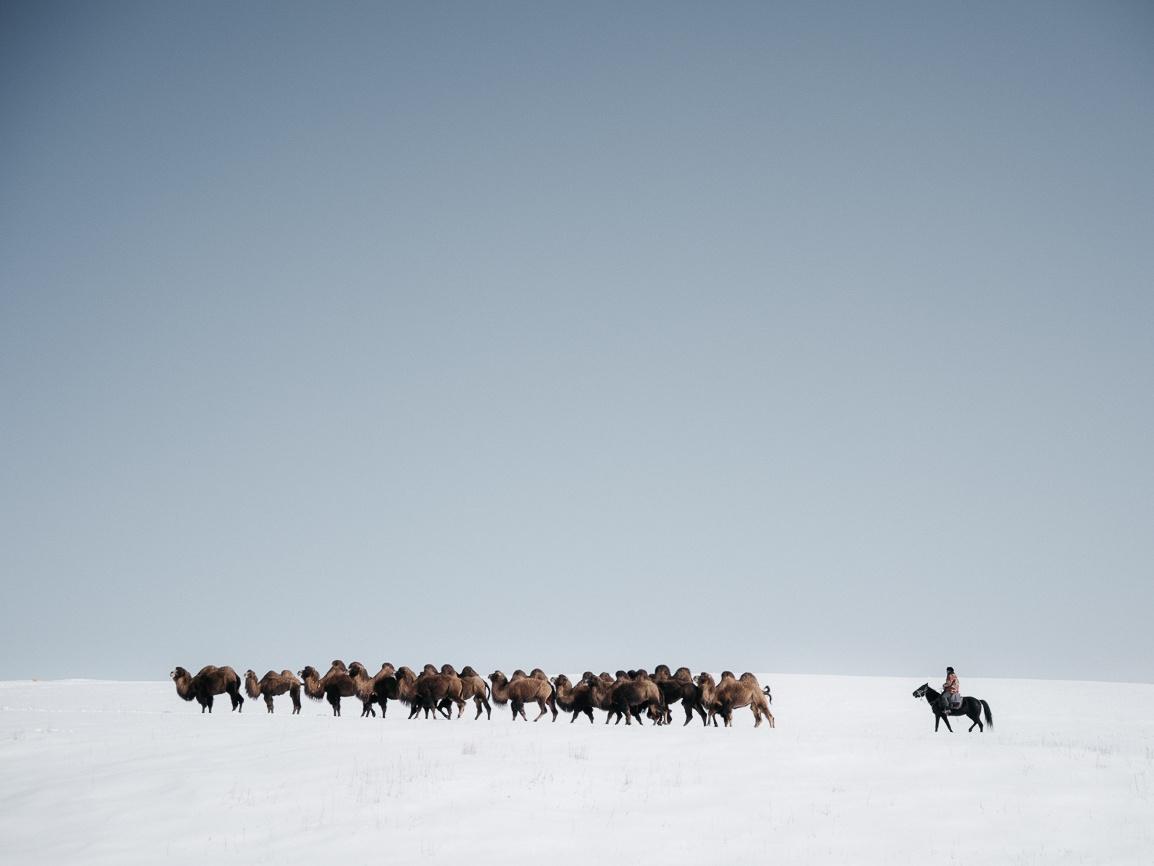 Kirgistan Kamel Hirten Boirok Bulak