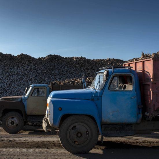 Kirgistan Rüben Lastwagen Fahrer