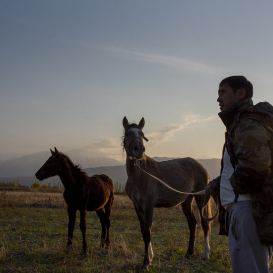 Kirgistan Pferden