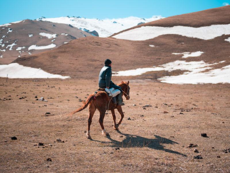 Pferd Kirgistan Steppe