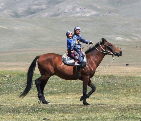 Kirgistan Issikkul See Geschwister Pferd