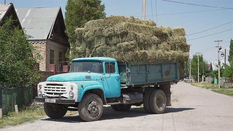 Bild des Tages Kirghisistan Bischkek