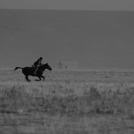 Kasachstan, Reiter, Steppe, Pferd, Turkistan
