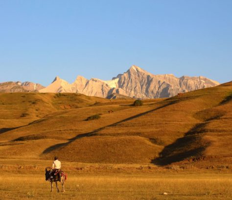 Shymkent, Kasachstan, Pferd, Berg, Bild des Tages