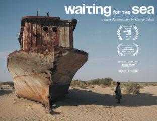 Waiting for the Sea Documentary Uzbekistan Poster Music Stihia Festival