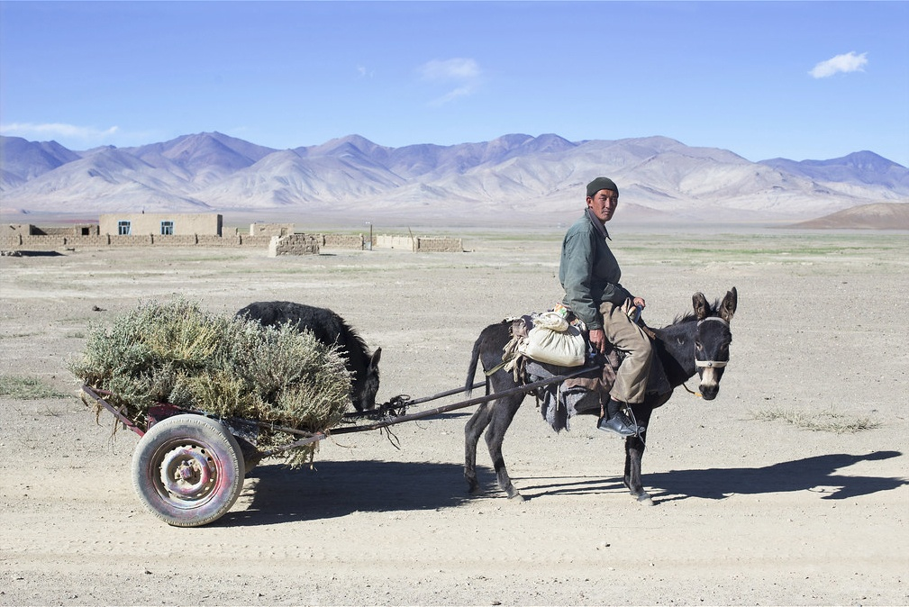 tajikistan herbs village rangkul