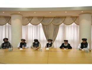 The Taliban delegation to Turkmenistan
