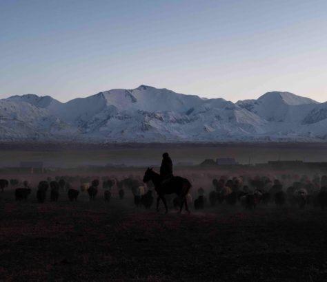 Sary Mogol Danil Usmanov Kyrgyzstan