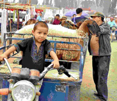 driver Kashgar bazaar China Xinjiang Uyghur