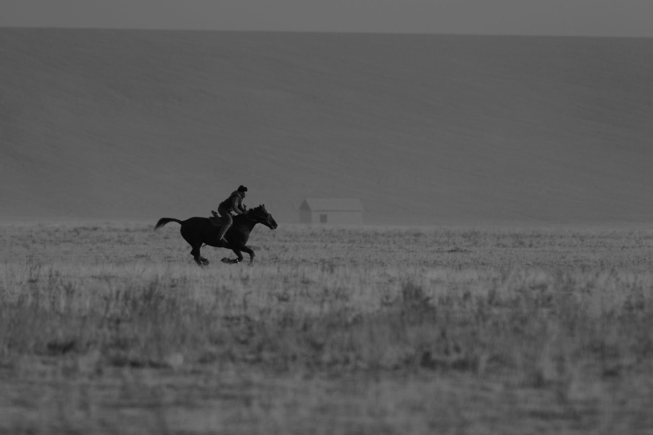 Kazakstan, Steppe, Horseman, Horse, Turkistan