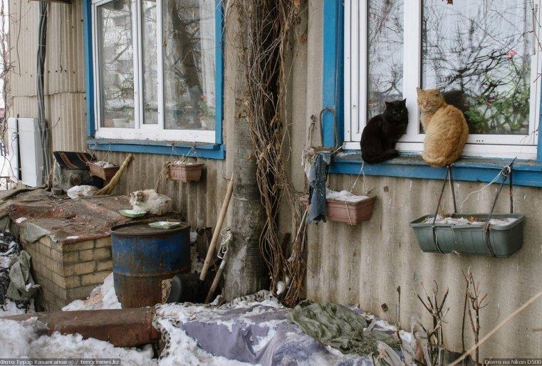 Prigorodny Kazakhstan Chats