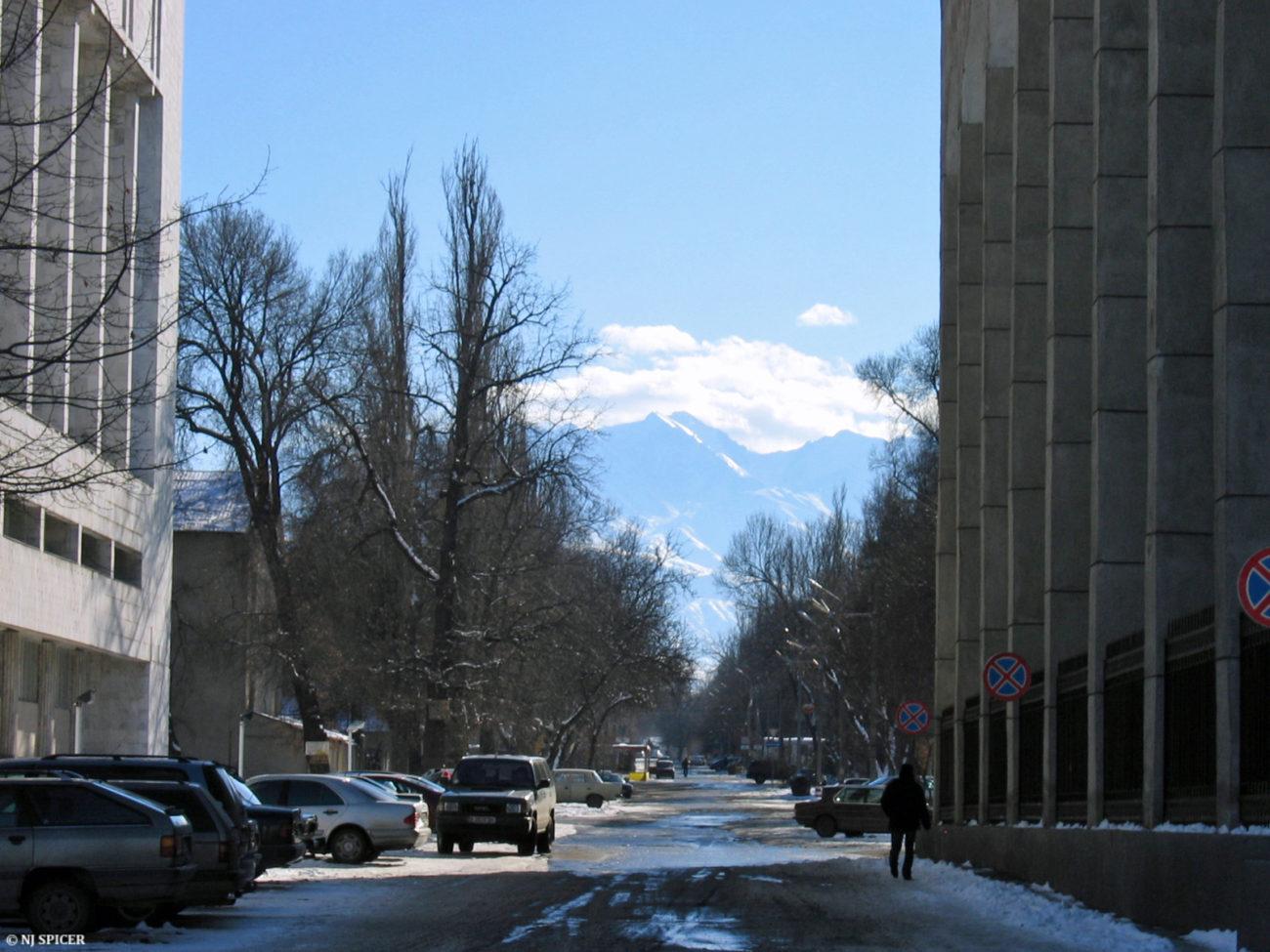 Bichkek Montagne Kirghizstan Environnement Rue Ville Capitale