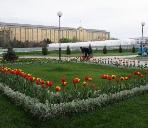 Vue de Tachkent