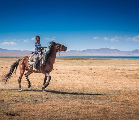 Enfant Kirghizstan Equitation Cheval Cavalier