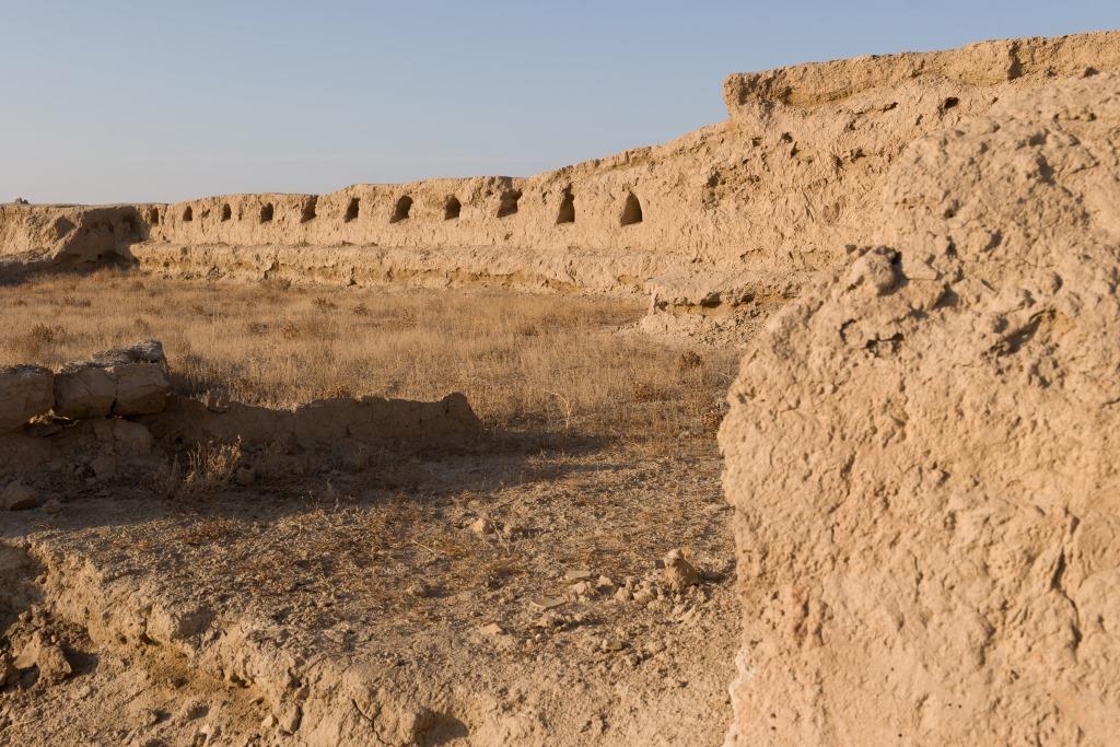 Gonur Depe Turkménistan Age de Bronze Margiana Royaume