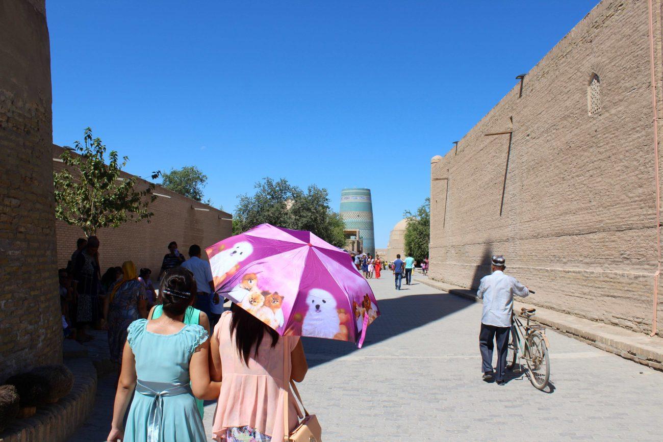 Khiva parasols chiens