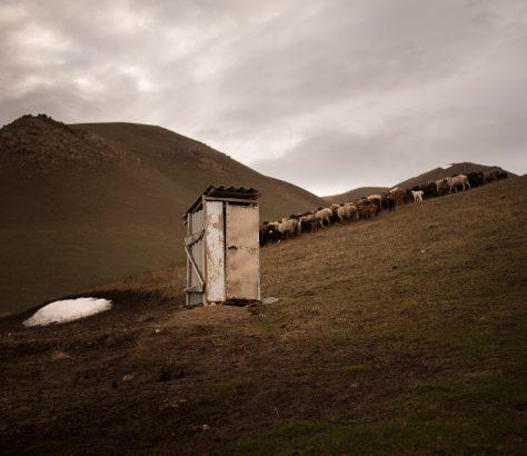 journée de pâture toilettes familiales