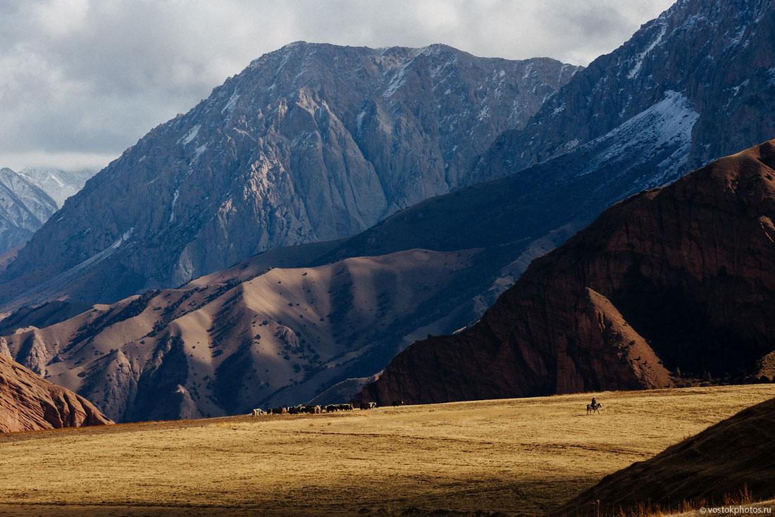 Kirghizstan Pamir Montagne Reportage Paysages Berger Yaks