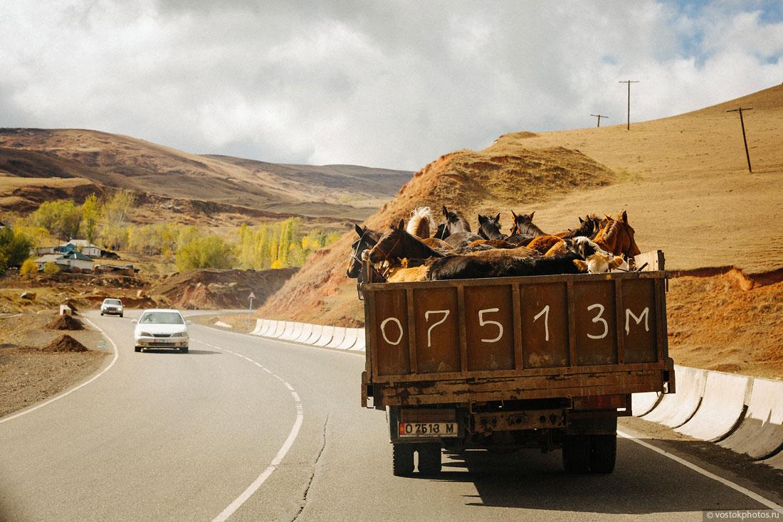 Kirghizstan Pamir Montagne Reportage Paysages Chevaux Camions