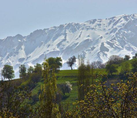 Printemps Ouzbékistan montagnes