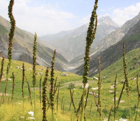 Tadjikistan Montagnes Randonnée Tourisme