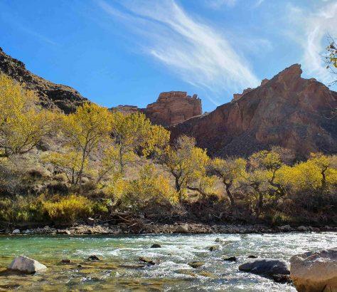 Automne dans le canyon