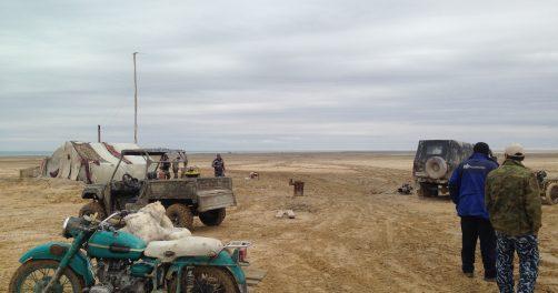 Mer d'Aral Environnement Crustacé Artémie Monopole