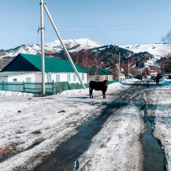 Photo du jour Kirghizstan Jyrgalan Hiver Village